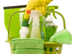 Секреты экологически чистой уборки дома