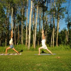 10 поз йоги на каждый день