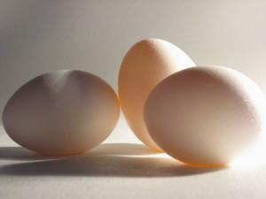 14 источников чистого протеина