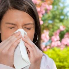 Характерные летние болезни