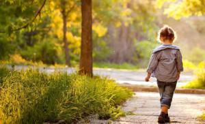 Как научить ребенка беречь природу