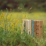 летние книги