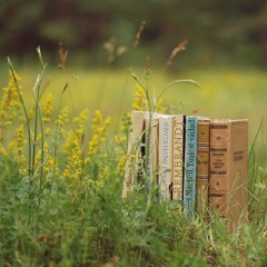 5 летних книг